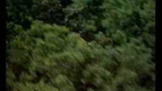 Sunshine (1999) Trailer - Ralph Fiennes