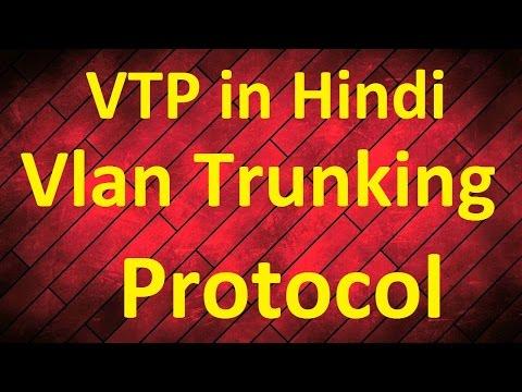 VTP Vlan Trunking Protocol in Hindi