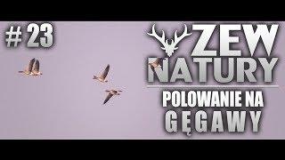 Zew Natury #23 - Polowanie na gęsi