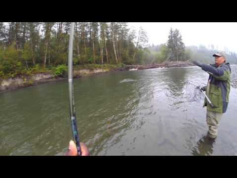 Quinault  Guided River Fishing