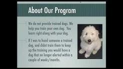hqdefault - Diabetic Alert Dog University