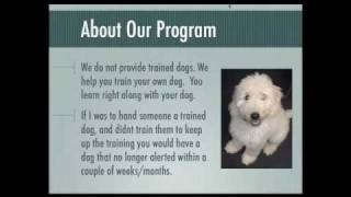 Diabetic Alert Dog Training Fundamentals - Free Advice