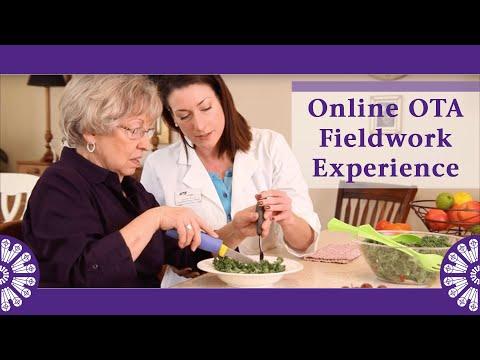 the-fieldwork-experience-in-st.-catherine's-online-ota-program