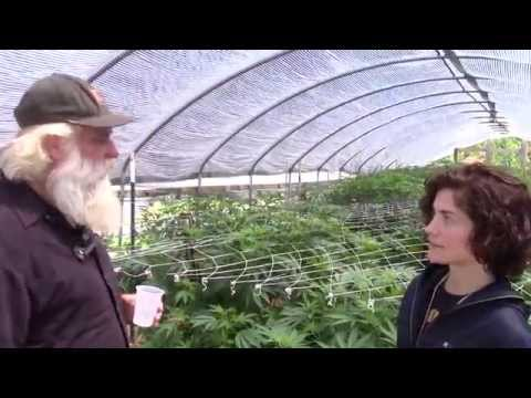 Visiting Farmer Tom's Organic Cannabis Gardens