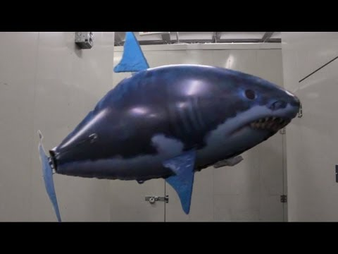 Inflatable Flying Shark Escapes From Warehouse!