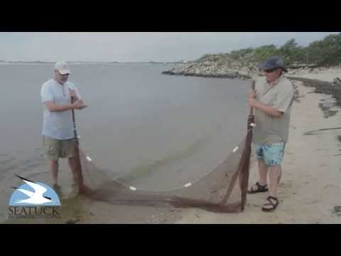 Seining for Tropical Fish with Seatuck