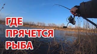Где рыба Быстрый поиск рыбы на реке весной ловля на спиннинг