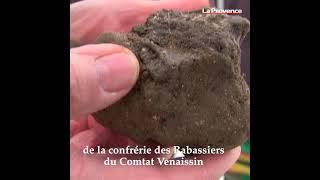 Viens je t'emmène... à Carpentras à la découverte du plus vieux marché aux truffes de France