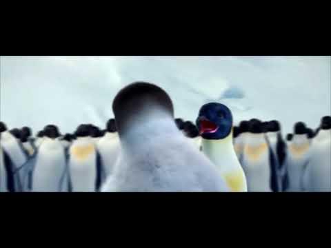 Goyang Pinguin MP3