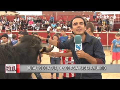 Día del niño en Amurrio y todos a la plaza de toros