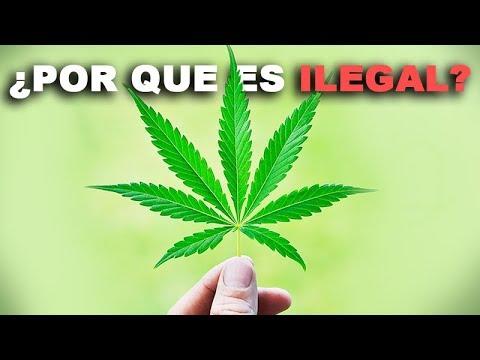 ¿Por Qué la Marihuana es ILEGAL