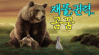 ☞【꿈보다해몽】재물,권력,행운의곰꿈해몽입니다.재미로봐주세요~^^