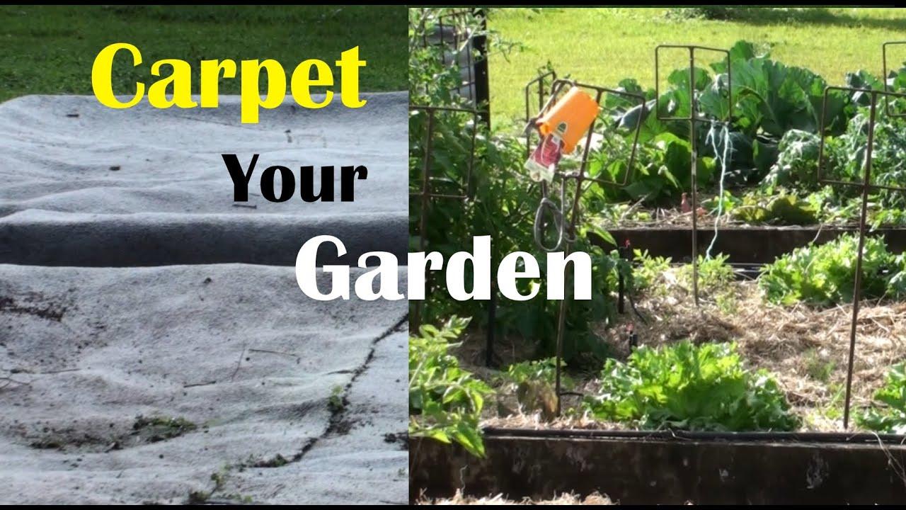Stop weeds in flower beds - Carpet Your Vegetable Garden To Stop Weeds Grow Great Crops