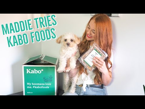 kabo-foods-|-unboxing,-maddie's-taste-test-review-🐶🍽