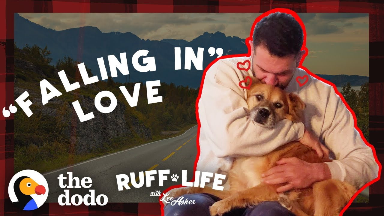 Guy Can't Stop Crying When It's Time To Get His Foster Dog Adopted   Ruff Life With Lee As