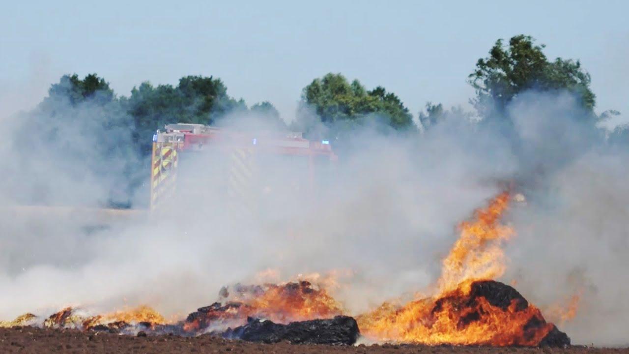 Über 100 Feuerwehrkräfte bekämpfen Flächenbrand bei Twistringen