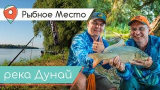 СПОРТИВНЫЙ МАКУШАТНИК и СОМ НА КВОК Какая она рыбалка на Дунае Рыбное место