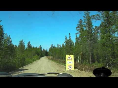 Отдых в Ленинградской области отзывы, цены, фото