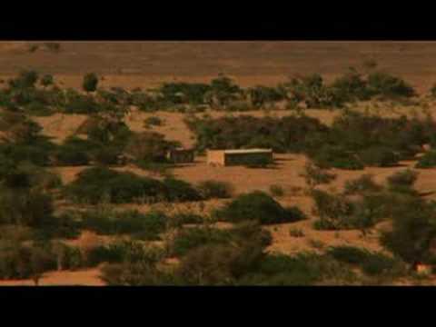 Human cost of war in Niger -17 Jul 08