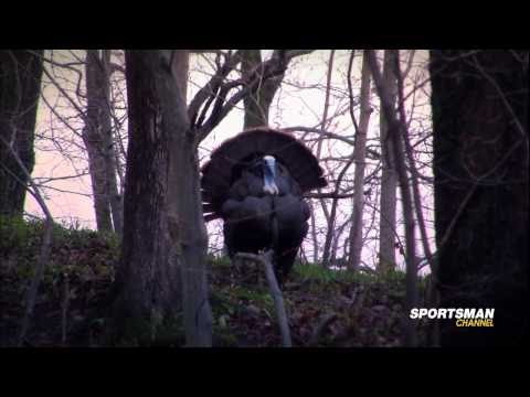 Turkey Hunting With Canada In The Rough