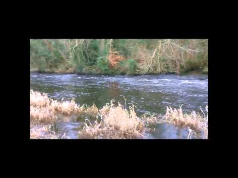 The Town Of Ramelton Co Donegal And River Lennon / Foylefishing.com