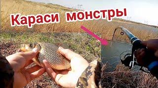 РЫБАЛКА Ловля КАРАСЯ и САЗАНА на ПОПЛАВОК весной в мае Рыбалка на ЗАКИДУШКИ кормочки