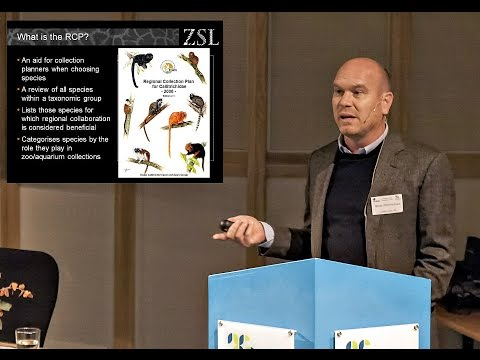 FishBase 2015: Brian Zimmerman