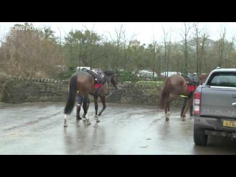 Paul Nicholls: weekend runners