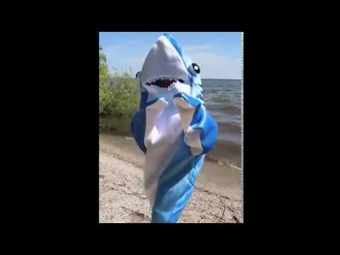 Shark-ira Shark-ira
