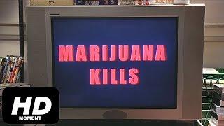 Марихуана убивает, Гарольд и Кумар, отрывок из фильма