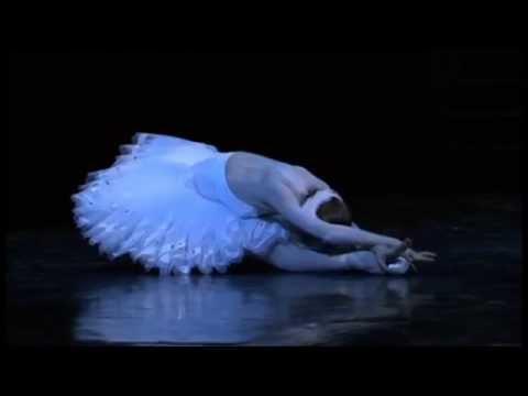 Le Lac des Cygnes Acte IV Opéra de Paris / Swan Lake Act IV Paris Opera Ballet (Pas de deux)