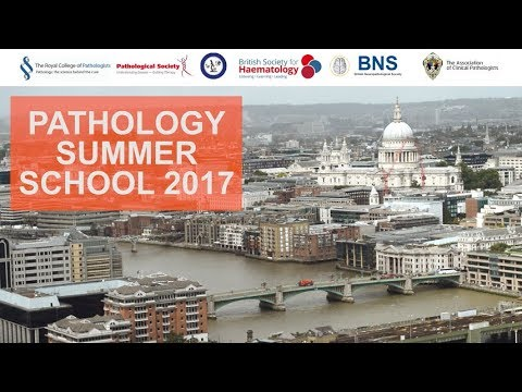 Pathology Summer School 2017