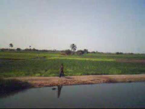FANTASTIC EGYPTIAN COUNTRYSIDE الريف المصري الساحر