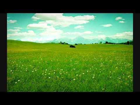 Main Tera Murga Lyrics By - Hitler (1998) Full HD Song