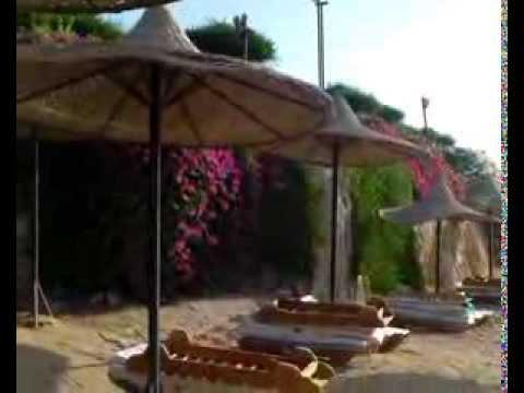 Siva Sharm, Sharm el Sheikh, kert, strand 2013