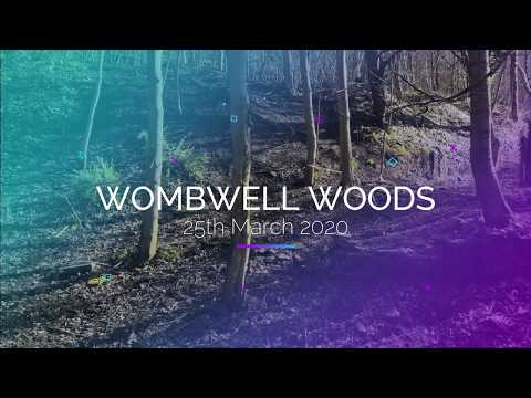 Wombwell Woods : Part 1 / Drone