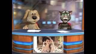 Bản Tin Chó & Mèo (cực hài) Số 3 - Wanbi, Ngọc Trinh, Fan KPop, The Voice Kids, Giao Thông