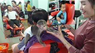 Baby Monkey Doo Very Lovely And Kids | Hair Salon - Funny Animals
