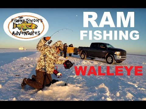 SICK Fish Doctor Walleye Ice Fishing At Lesser Slave Lake Alberta