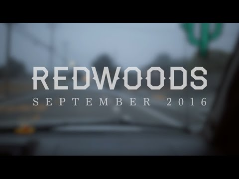 REDWOODS | SEPTEMBER 2016