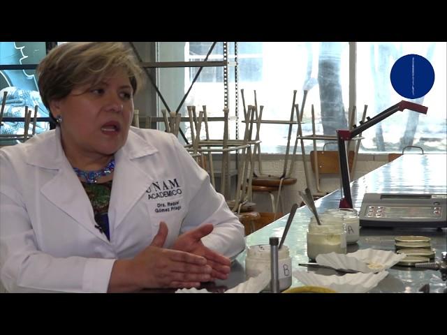 Fibras Prebióticas, un beneficio para la salud