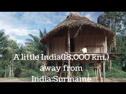 Suriname , South America | A Little India Away from India