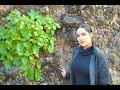 Video de Bacanora