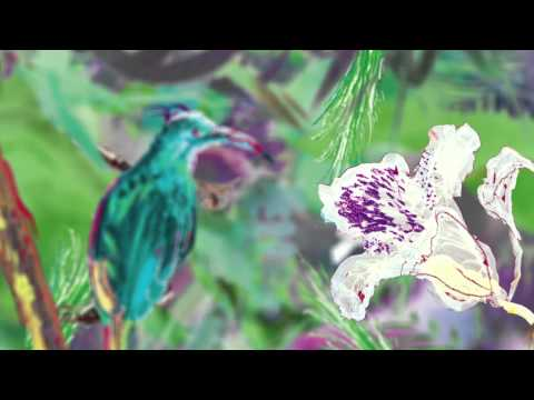 SISLEY COSMETICS - EAU TROPICALE