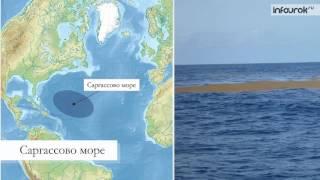видео Мировые океаны