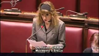 """Tiziana Ciprini (M5S): """"Le mafie infiltrano l"""
