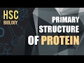 ০৮৬) অধ্যায় ৩ - কোষ রসায়ন : Primary Structure of Protein [HSC | Admission]