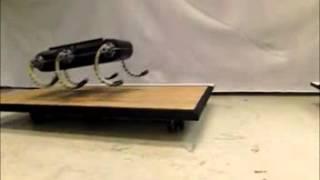 Legged Robot Performs Acrobatic Leaps