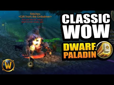Dwarf Paladin - STITCHES WANT TO PLAY (RP leveling) // WoW