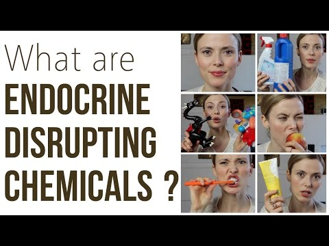 What Are Endocrine Disrupting Chemicals? Makeup And Medicine